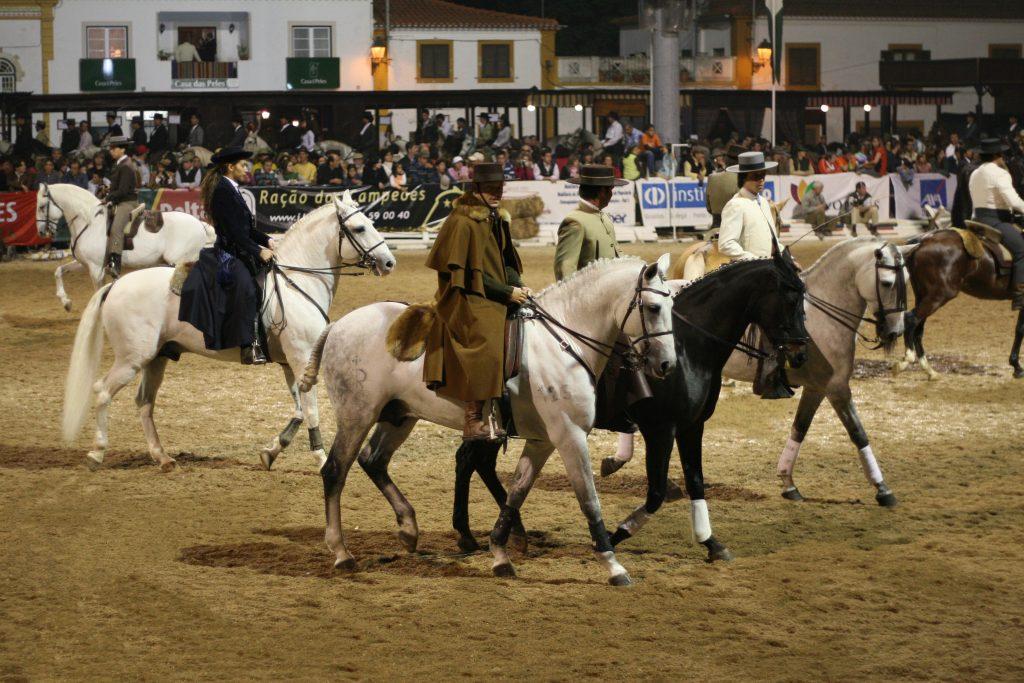 Feira Nacional do Cavalo، گولگا