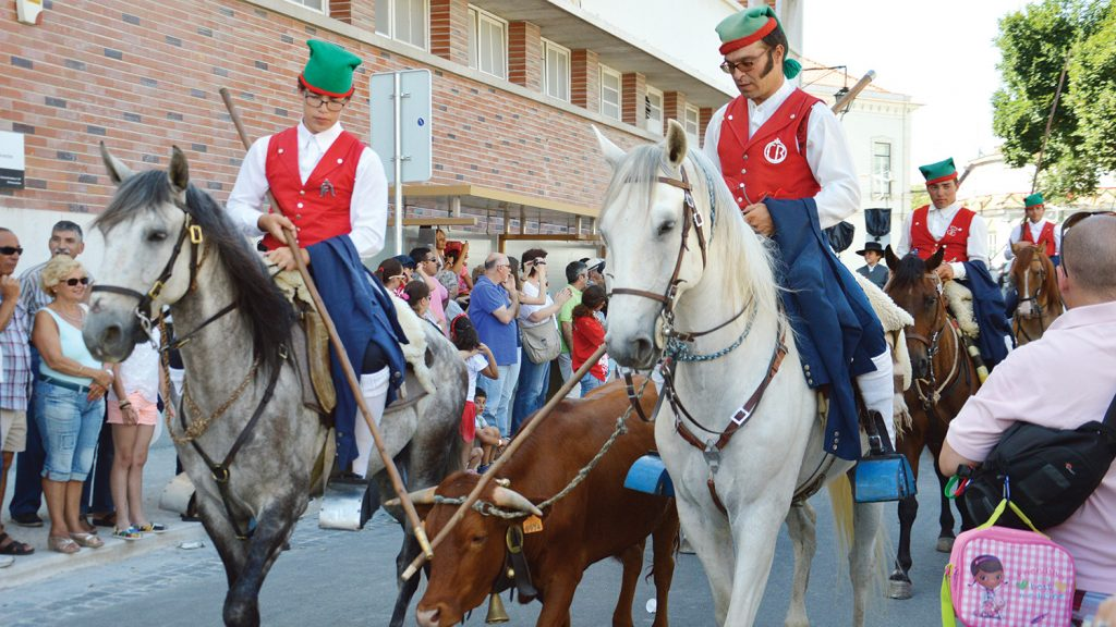 Festa do Colete Encarnado, Vila Franca de Xira